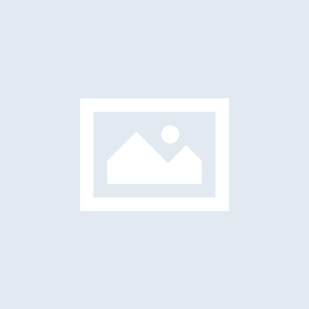 Paroles de la chanson Gabrielle – Johnny Hallyday